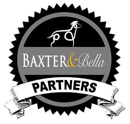 B&B PARTNERS Logo for light backgrounds.