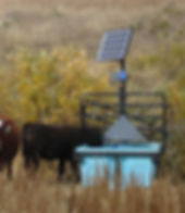 solar water systems for livestock