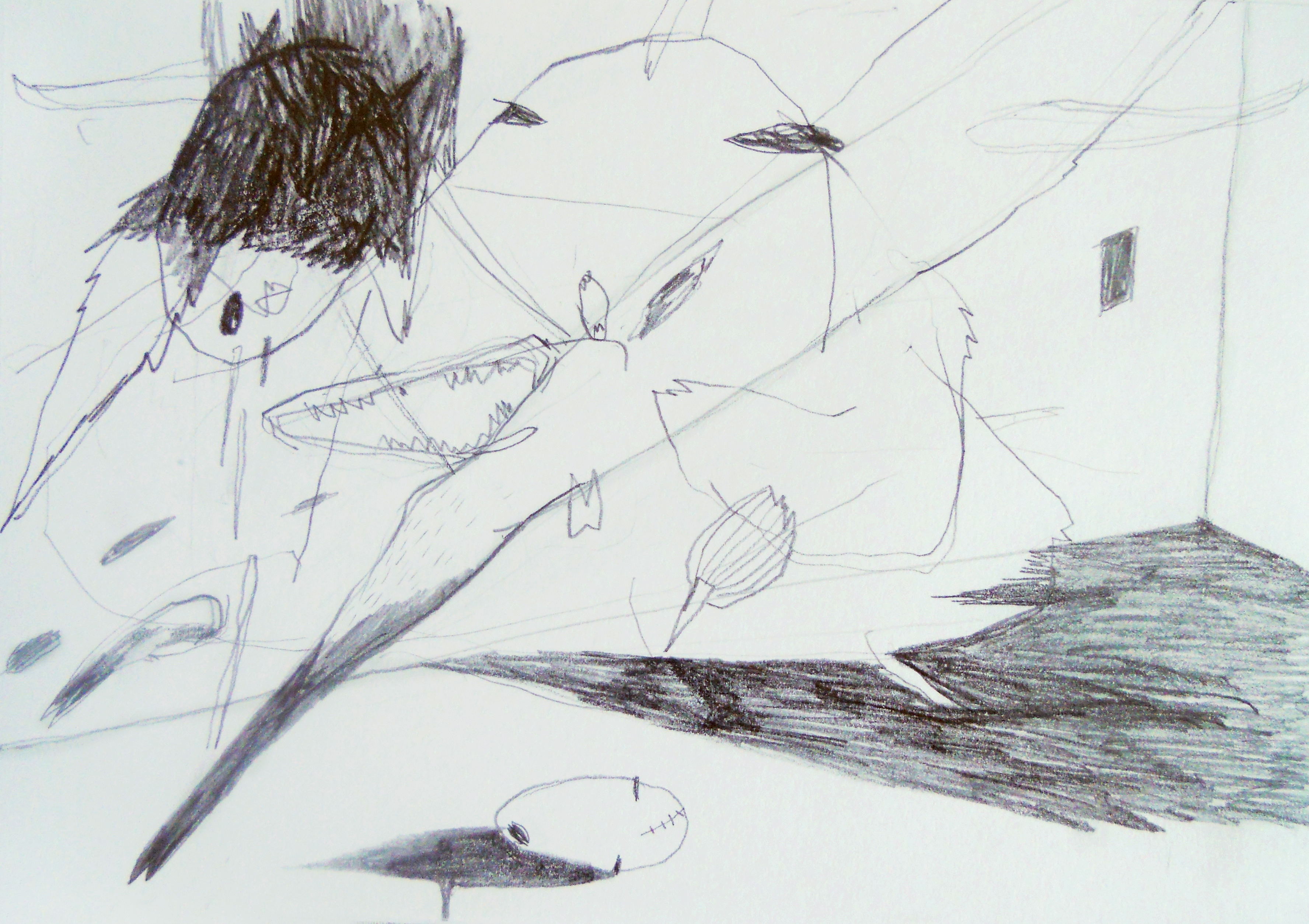 Drawings from a diary