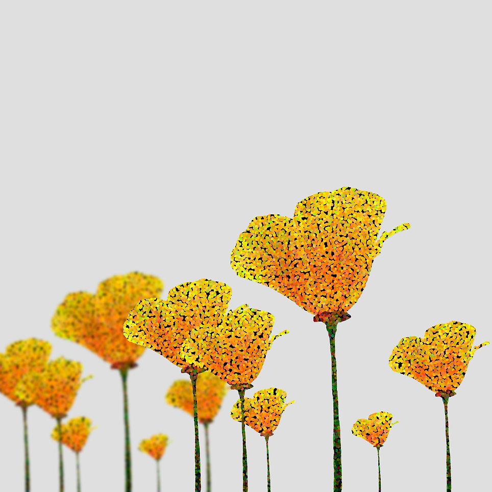 00_FLOWERfinalHNM.jpg