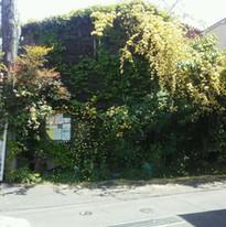 木香薔薇の家外観