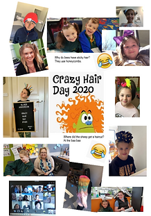 Crazy Hair Day 2020.PNG