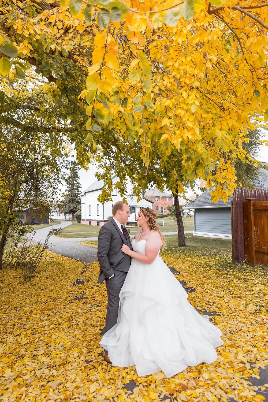 Fall Photos Edmonton