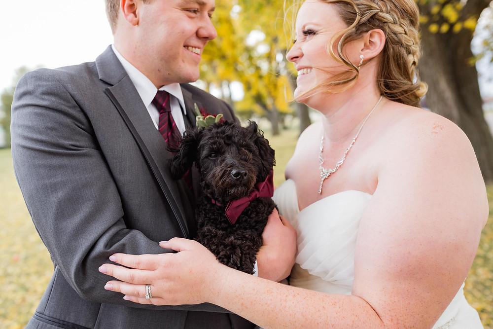 Cute Puppy At Wedding