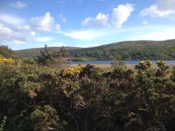Sraheens Lough Mayo