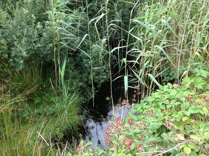 Culvert Lough Derrylea and Lough Crolan
