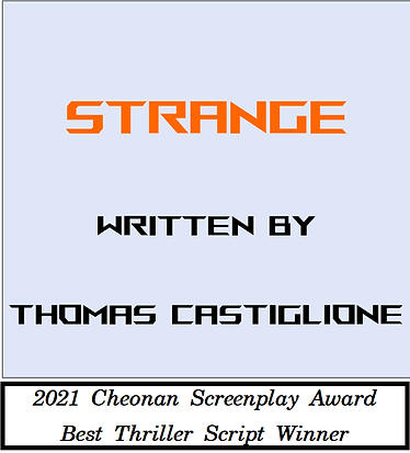 Best Thriller Script Winner001.png