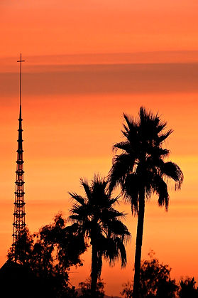 Backyard Sunrise. Church Steeple. Palm Trees. hotograph by Randy Zucker.