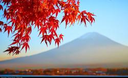 Mt Fuji Custom Tour Japan Japanese