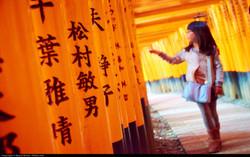 Shinto shrine Custom Tour Japan