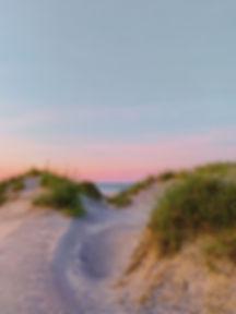 large grassy dune.jpg