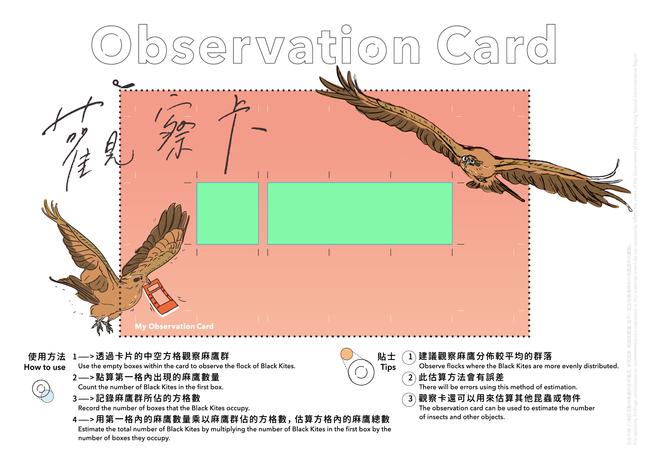 Black Kite Observation Card