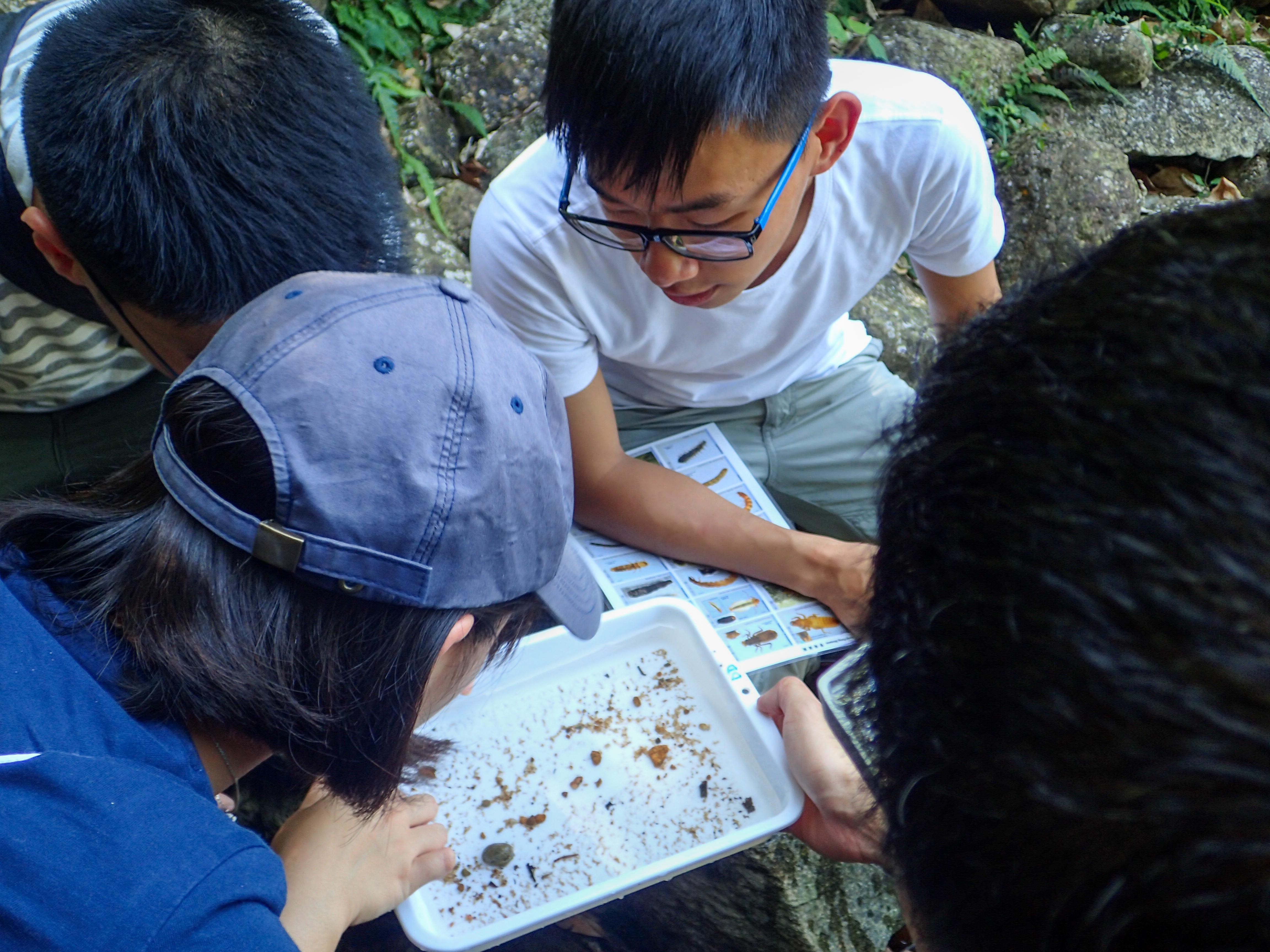 淡水動物調查 Freshwater Animal Survey