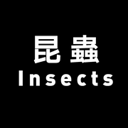 Insect experts >>