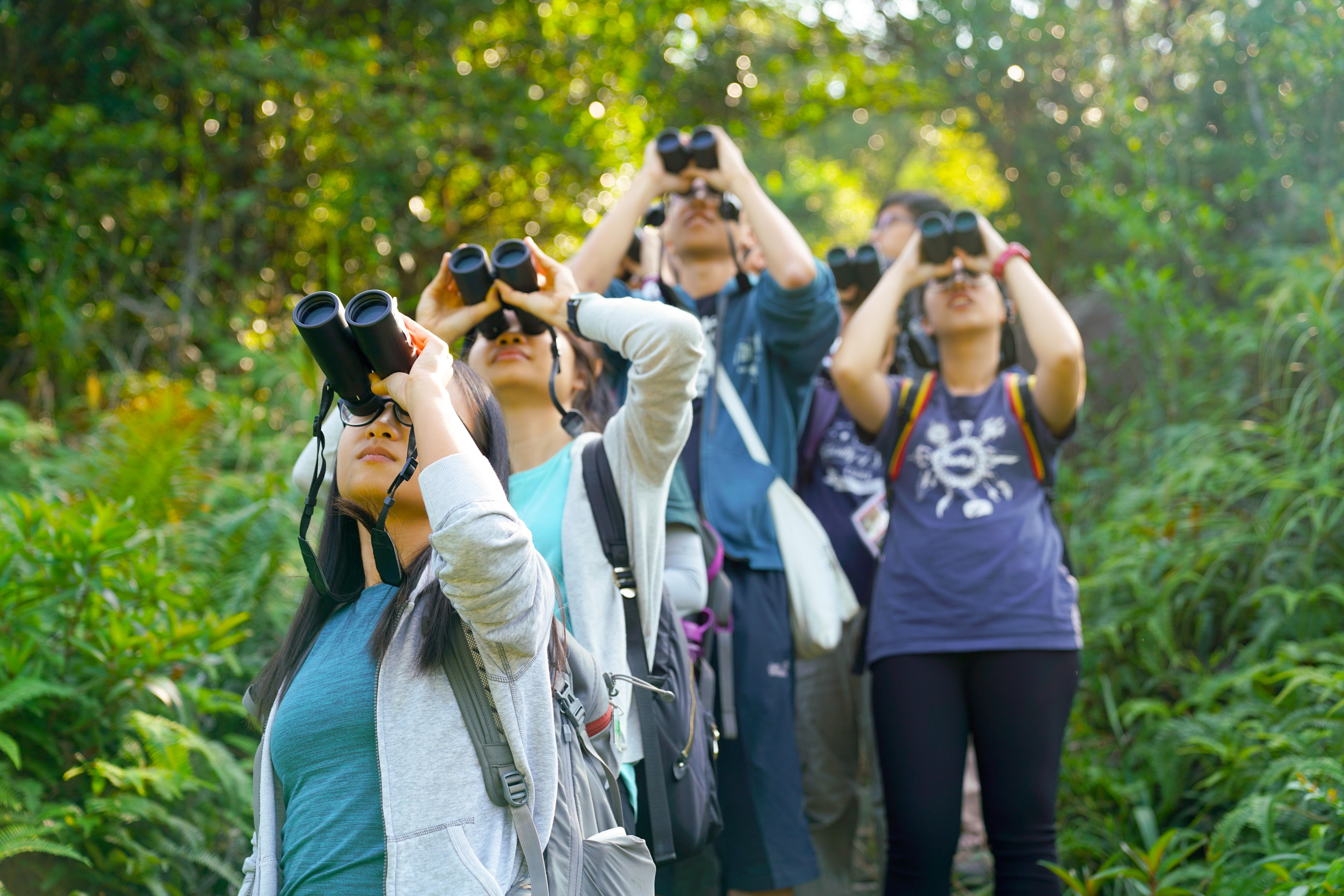 雀鳥調查 Bird Survey