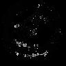 HKBWS_best_logo.png