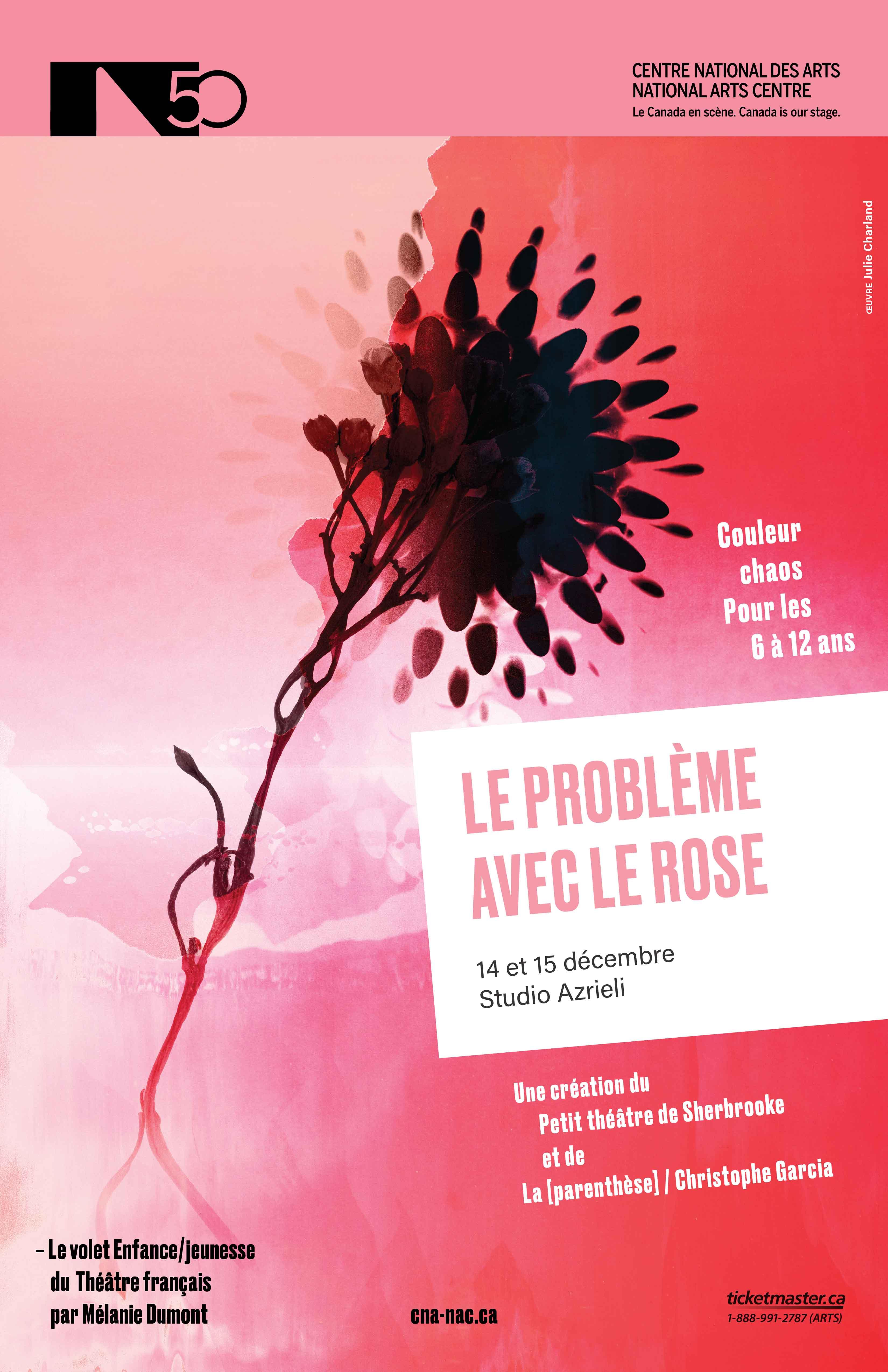 Le probleme avec le rose