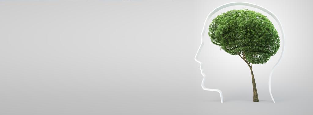 Neuropsicologia del desarrollo