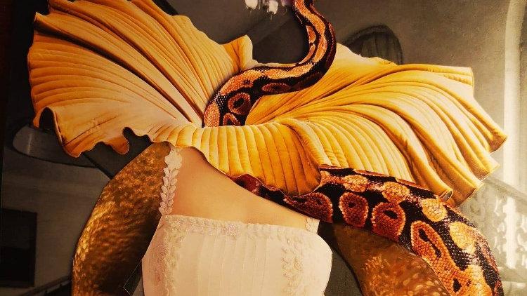 Snake bride