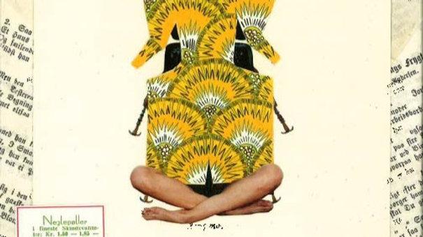 African yoga beetle