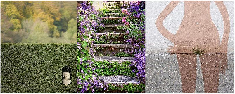 le jardin details