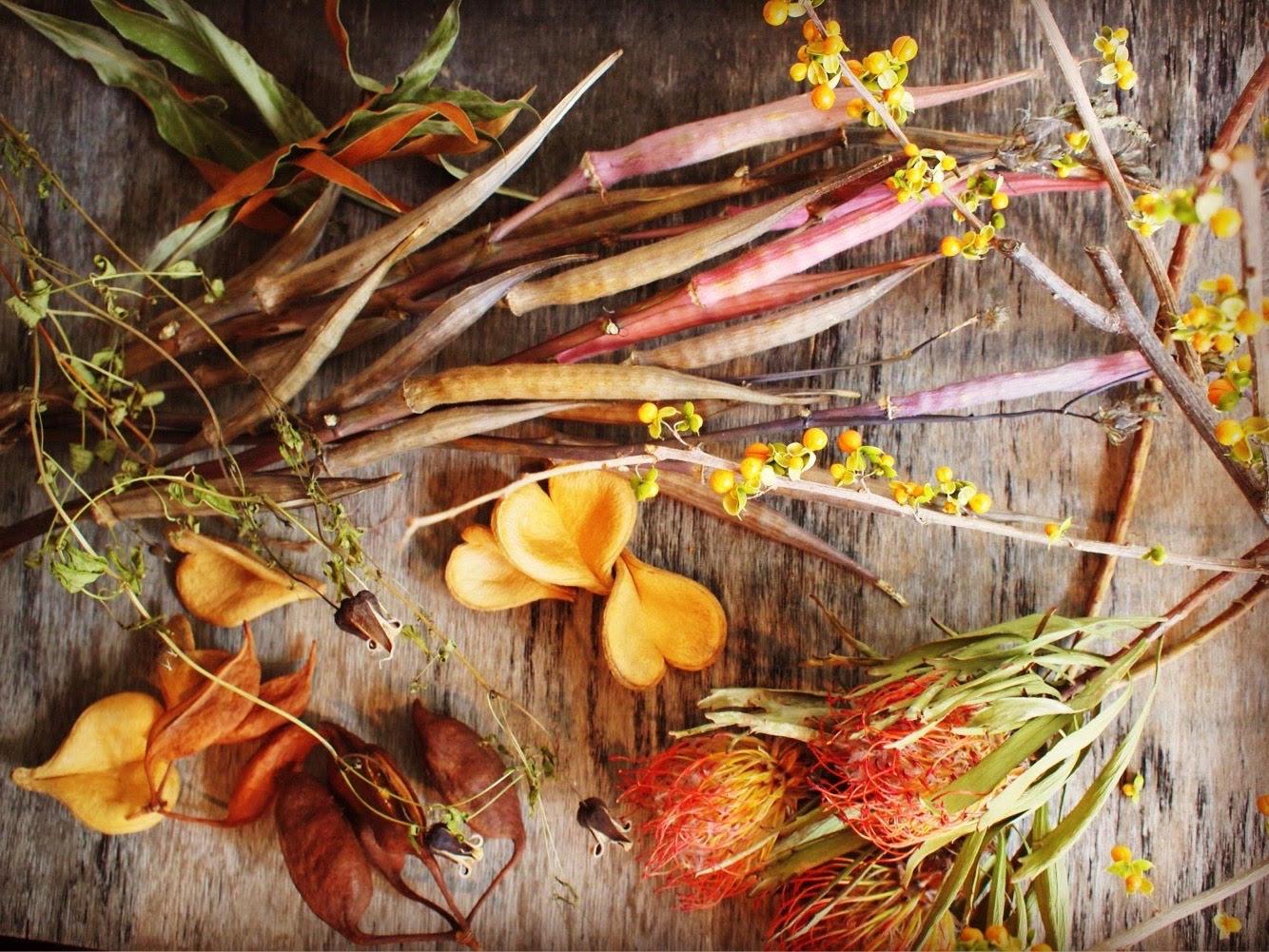 Dried flower ~ドライフラワー