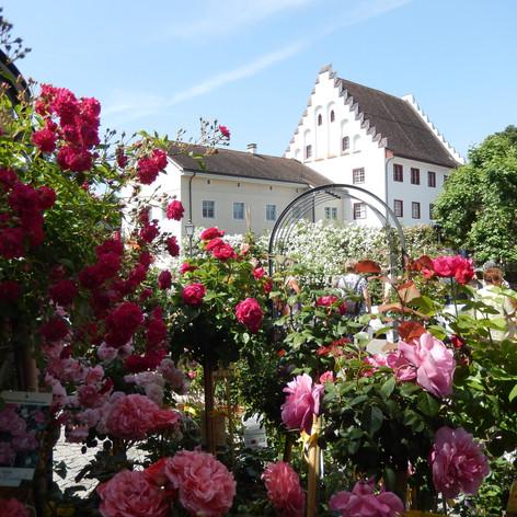 Schloss Bischofszell