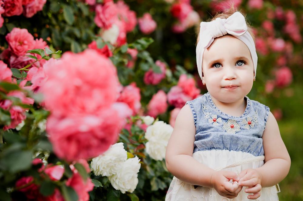 child girl roses photo of the pretty girl ребенок в розарии девочка с серыми глазами