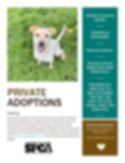 SPSCPA Private Adoptions.jpg