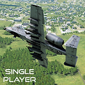 A-10 SP.png
