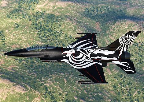 F-16B.jpg