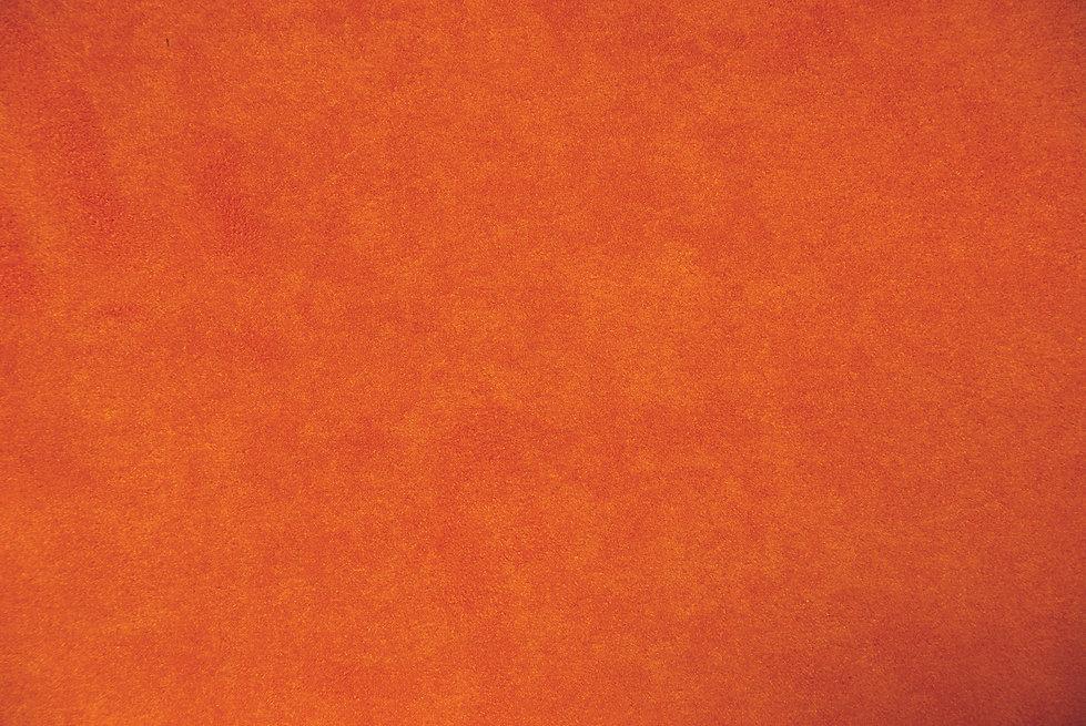 Background_Orange #1_290824091.jpg