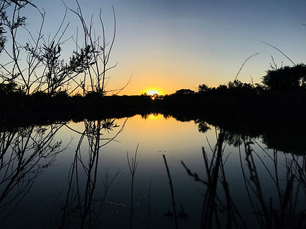 Sunset at Alameda Open Space.jpg