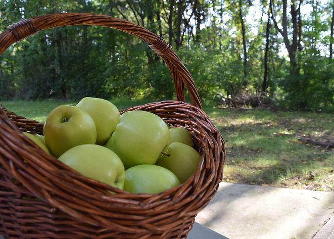 green apple day.jpg