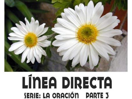 Línea Directa Léccion 3