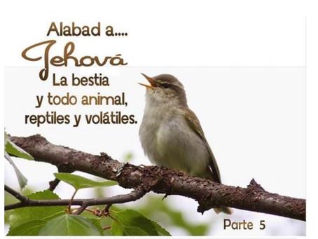 Sonidos en la Biblia Leccion 5