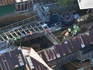Ardent Pleads Guilty to charges over Dreamworld Deaths