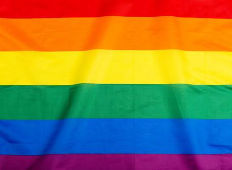 Levantamento sobre a população LGBTQIA+