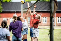 Volley i solskin