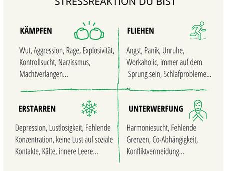 Wie du die Stressmuster deines Nervensystems erkennst und sie durchbrichst