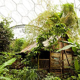 malaysian-house_1110.jpg