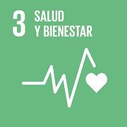 S_SDG-goals_icons-individual-rgb-03_edit