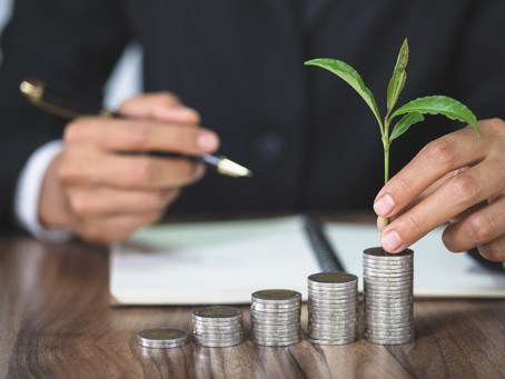 A Taxonomy to Scale Up Sustainable Investments in the EU