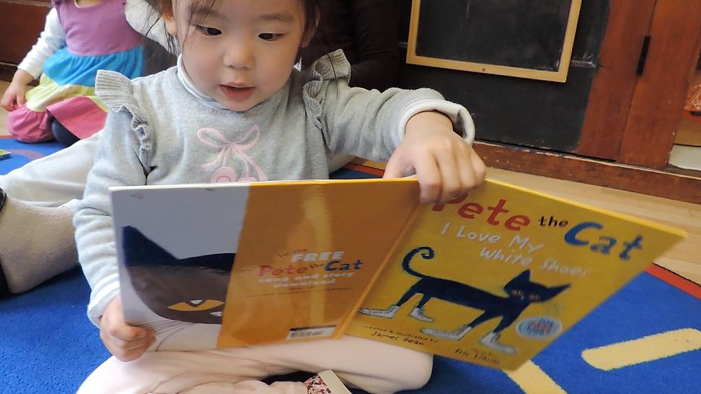 Beginner Student Reading
