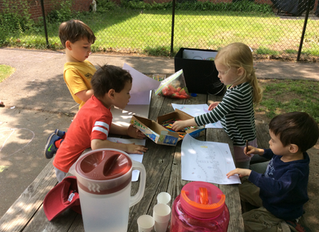Summer Learning for All Ages