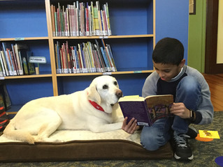 New to the NMS Library: PAWS TO READ Program