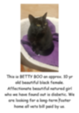 BETTY BPOO POSTER [PIC.PNG