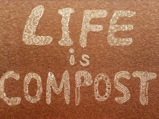 「 Life is Compost 」大切な事たくさん学んだ!#ブラウンズフィールド#TSUKI ACADEMY#Pranada(gumi&圭吾)