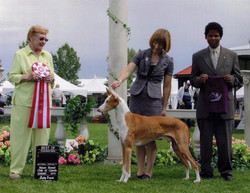Best Canadian Bred - 2010 National