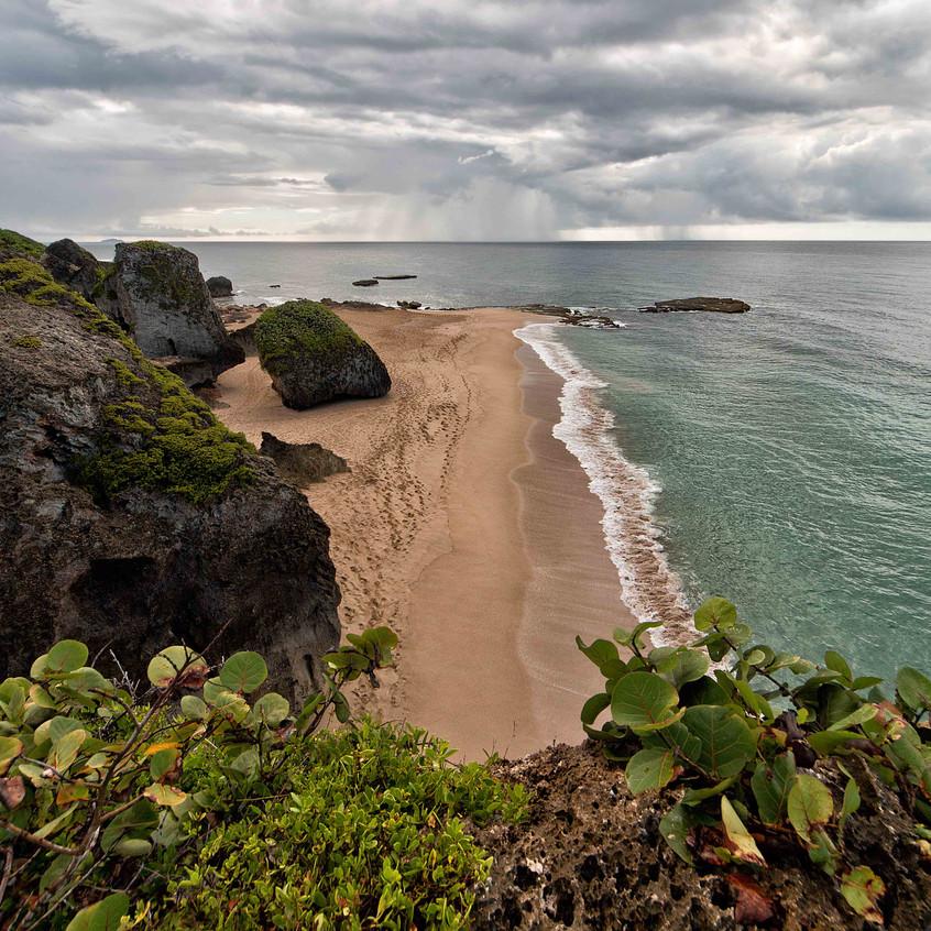 Survival Beach